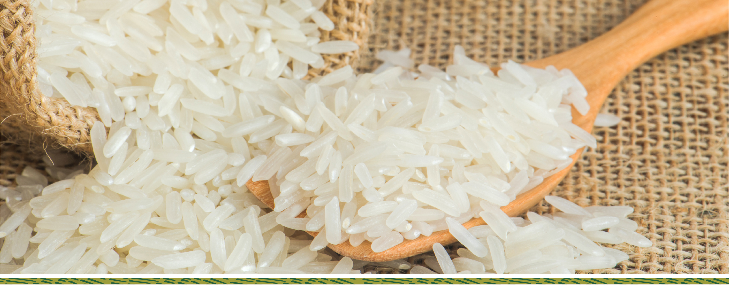Hỉnh dáng của gạo sạch